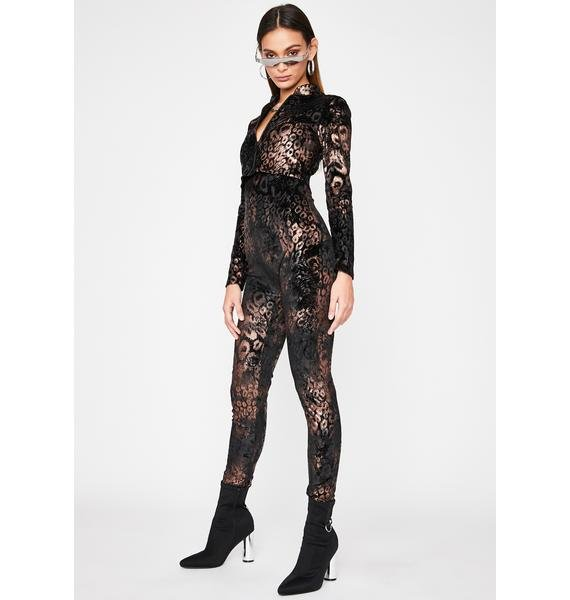 Poised To Pounce Catsuit Set