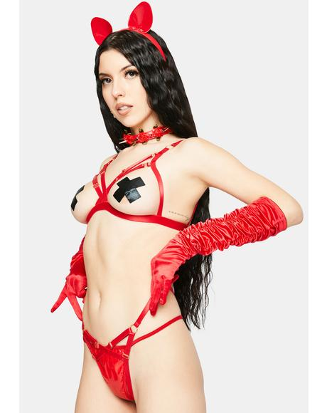 Dangerous Game Harness Lingerie Set