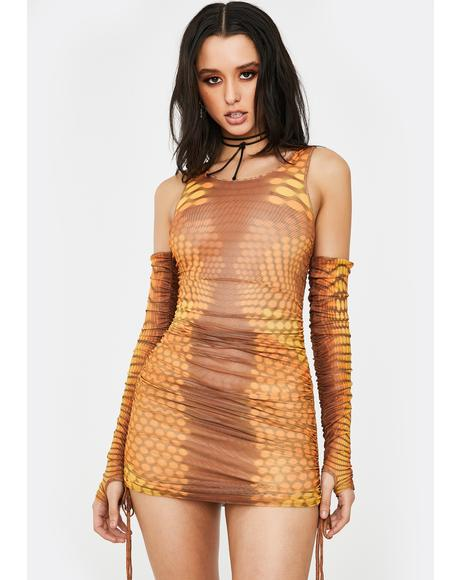 Glow New Money Mesh Dress