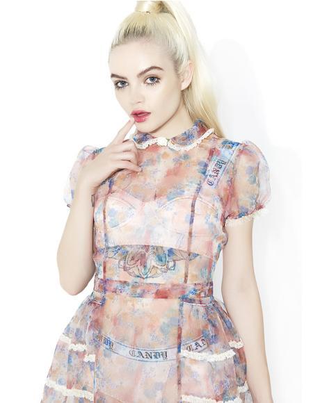Rococo Rose Sheer Dress