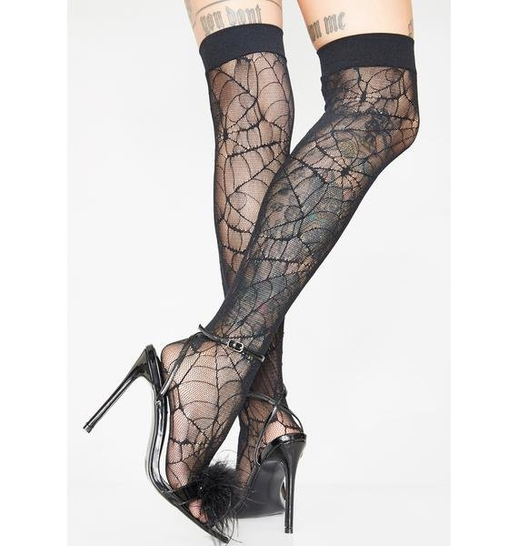 The Recluse Web Thigh Highs