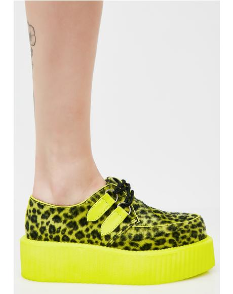 Wild Cheetah Creepers