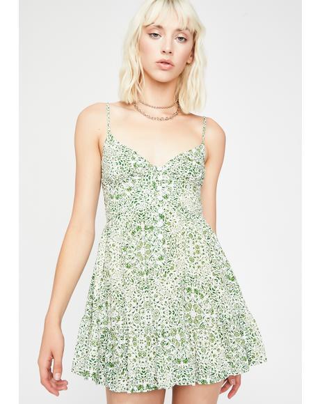 Picket Fences Floral Dress