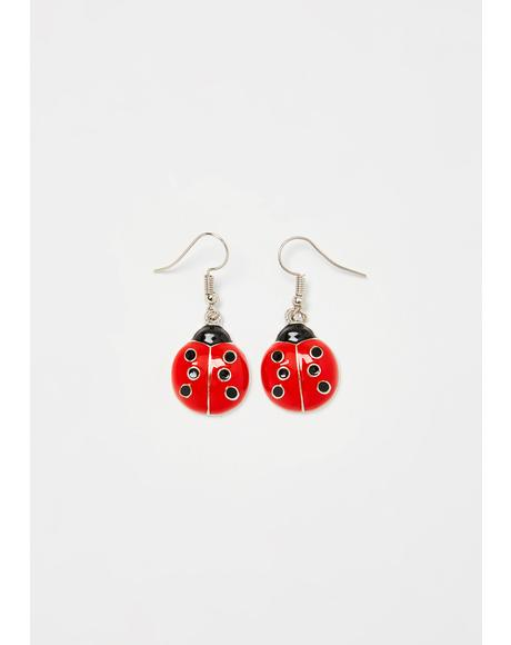 Miss Ladybug Earrings