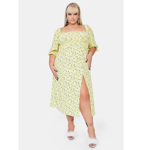 For Love & Lemons Plus Chrysanthemum Midi Dress