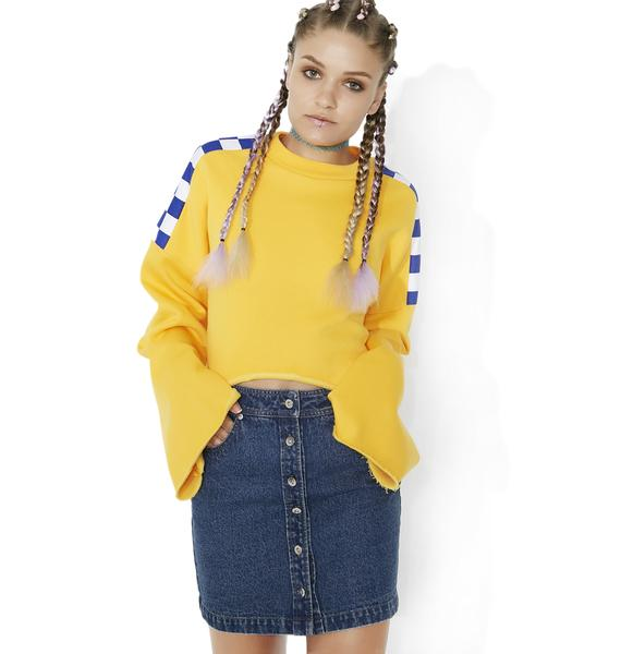 Chick Habit Denim Skirt