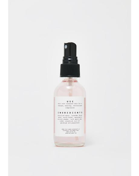 Watermelon Mint Toner