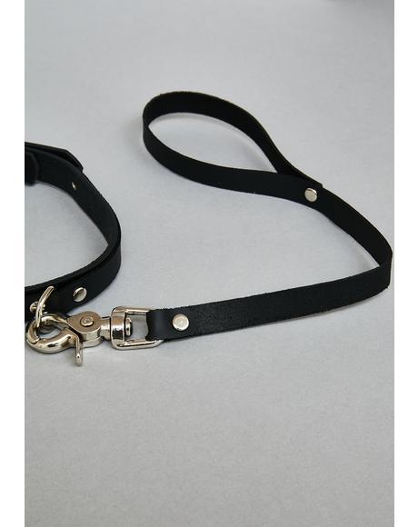 Vegan Leather Collar & Leash