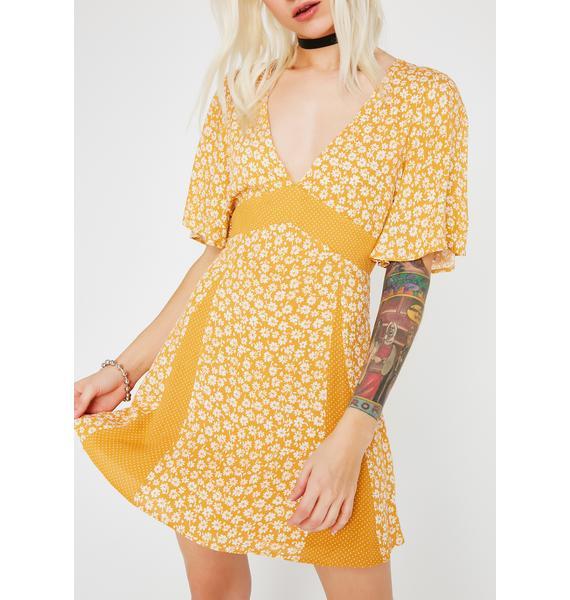 Cute As A Daisy Dress
