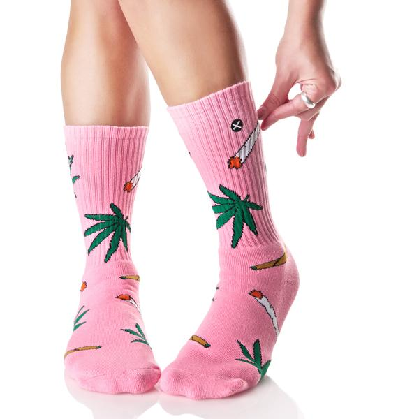 Odd Sox Pink Weedies Socks