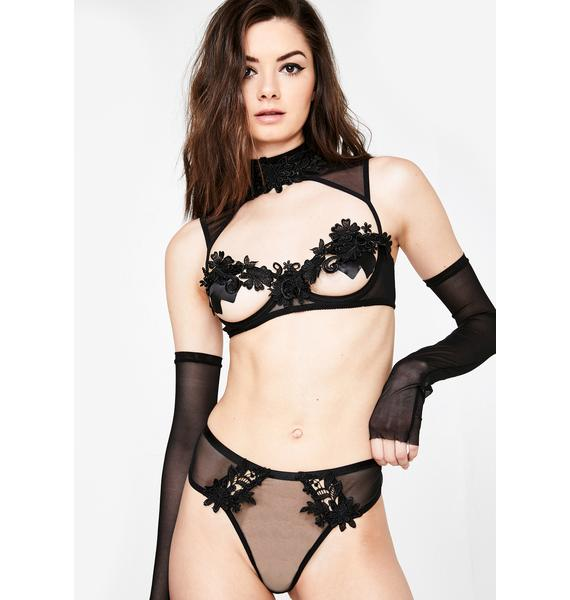 Romantic Persuasion Sheer Panties