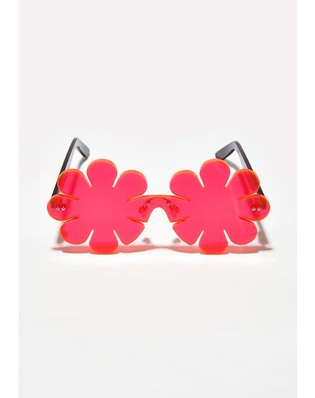 Neon Daisy Sunglasses