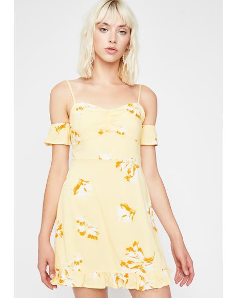 Super Bloom Floral Dress
