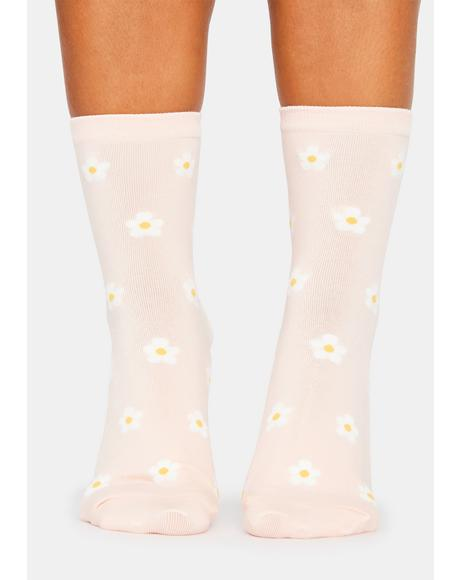 Sweet Meadow Mosey Daisy Crew Socks