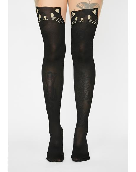 Cat's Meow Sheer Tights