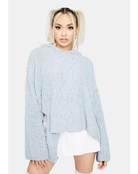 Wildest Dreams Knit Sweater