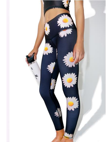 Daisy Hot Pants