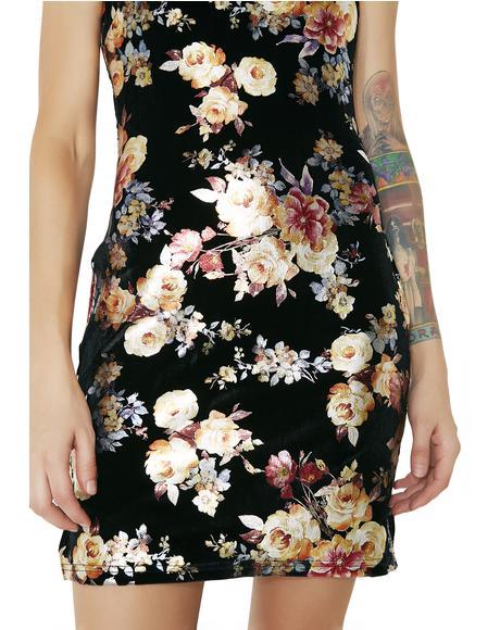 Devon Dress