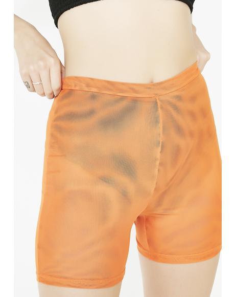 Aayra Shorts
