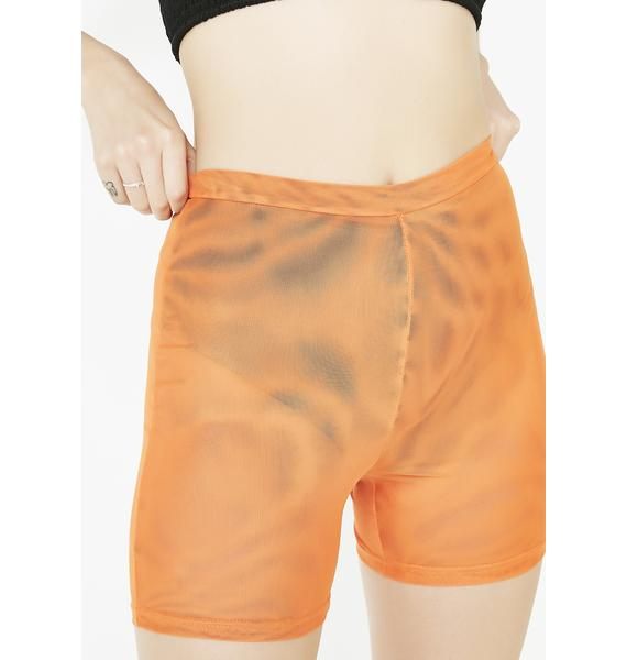 Tiger Mist Aayra Shorts