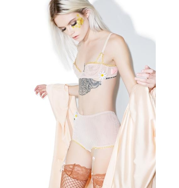 Fete Candie Knickers