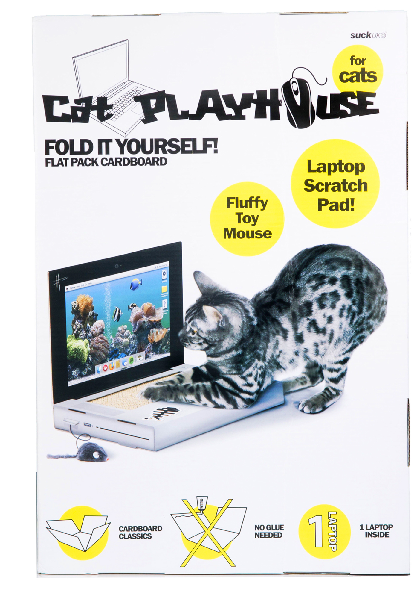 Cat Scratch Laptop