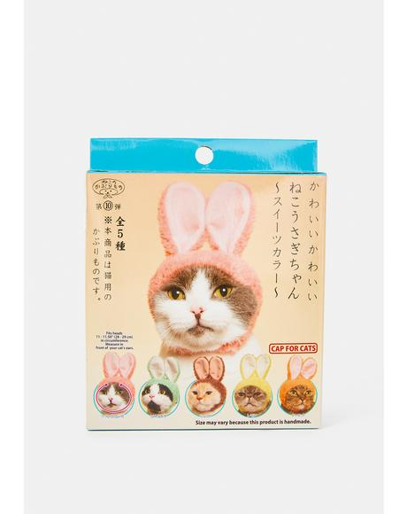 Bunny Cat Cap Mystery Box