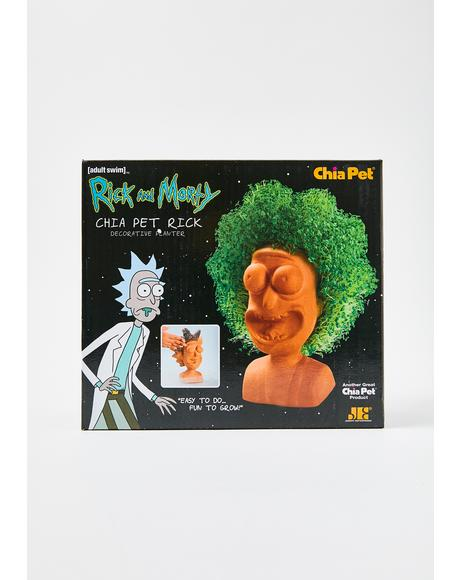 Chia Pet Rick Planter