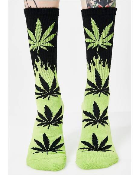 Flame Plantlife Socks