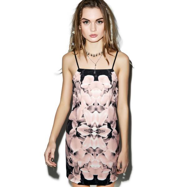Tiger Mist The Blush Dress