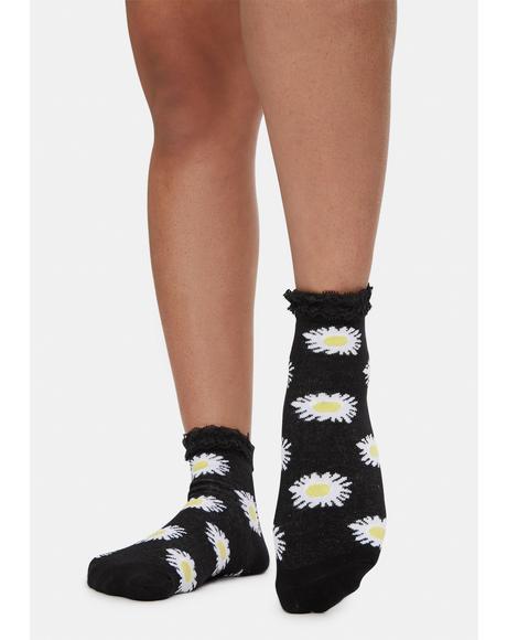 Night Daisy Fields Socks