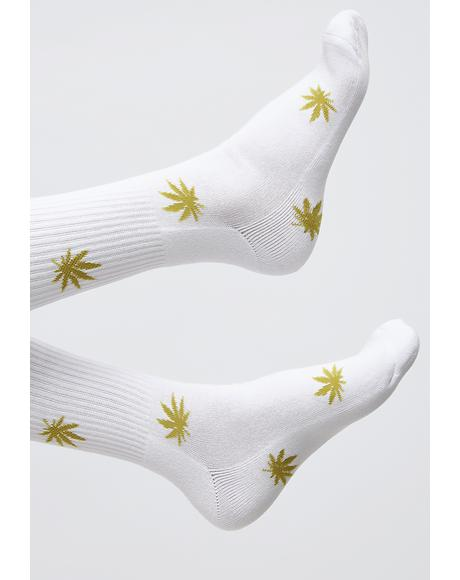Plantlife Monogram Socks