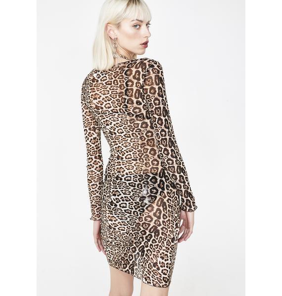 Tiger Mist Leopard Aarya Dress