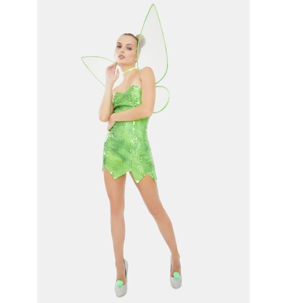 Fairy Secret Costume