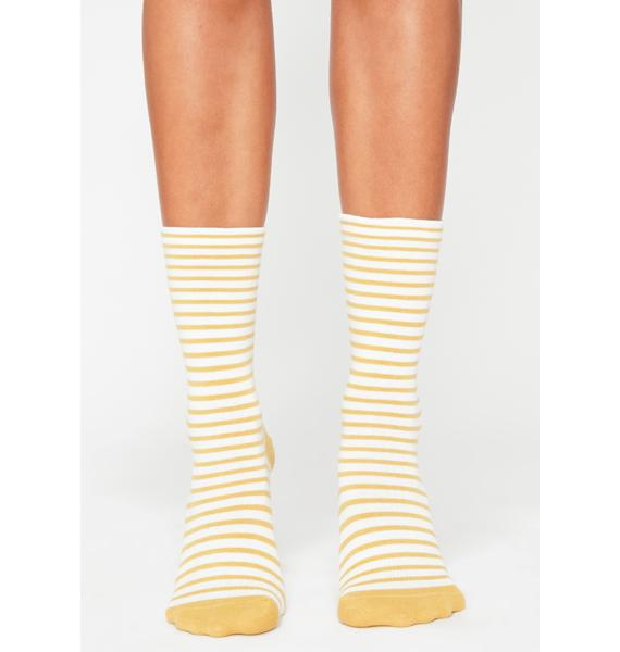 Lemon True Stripe Socks