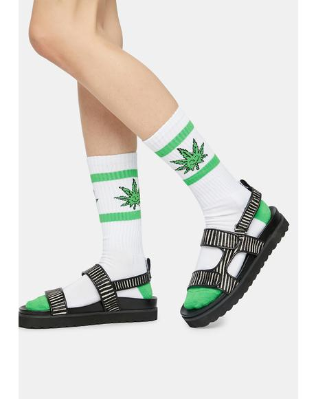 Green Buddy Athletic Socks