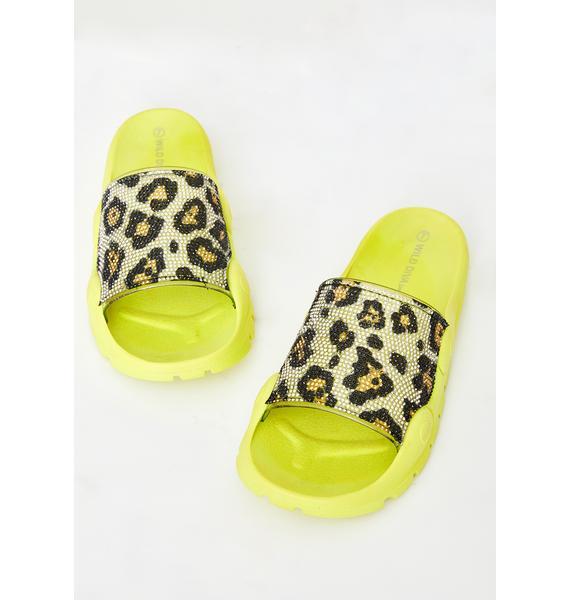 Sour Freak Flair Leopard Slides