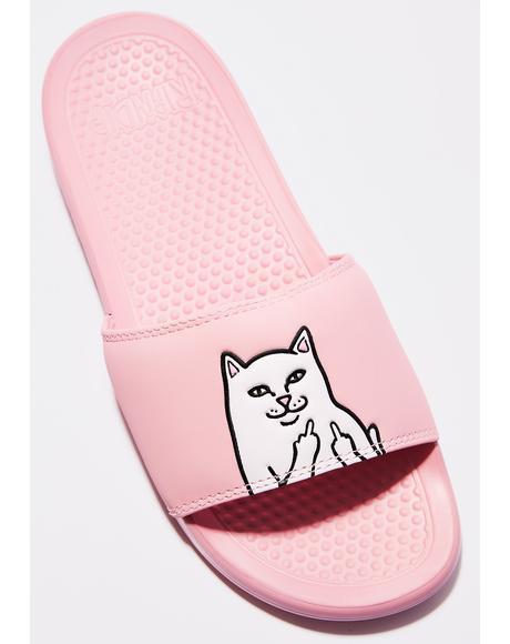Pink Lord Nermal Slides