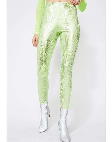 Liquid Toxins Snakeskin Leggings