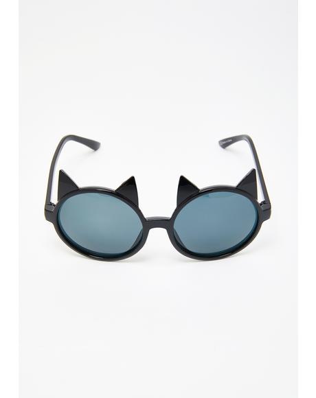 Katatonic Sunglasses