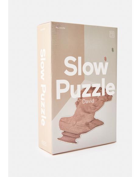 David Puzzle