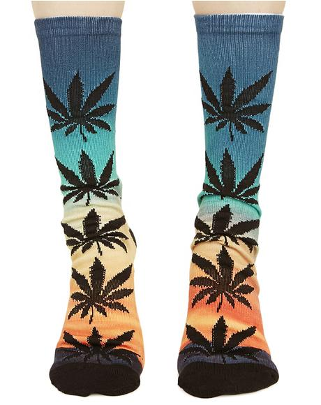 Outdoors Digital Plantlife Crew Socks