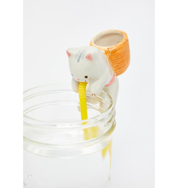 Cat Chuppon Mint Desk Plant