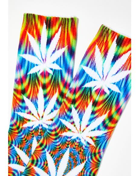 Plantlife All The Lights Sock
