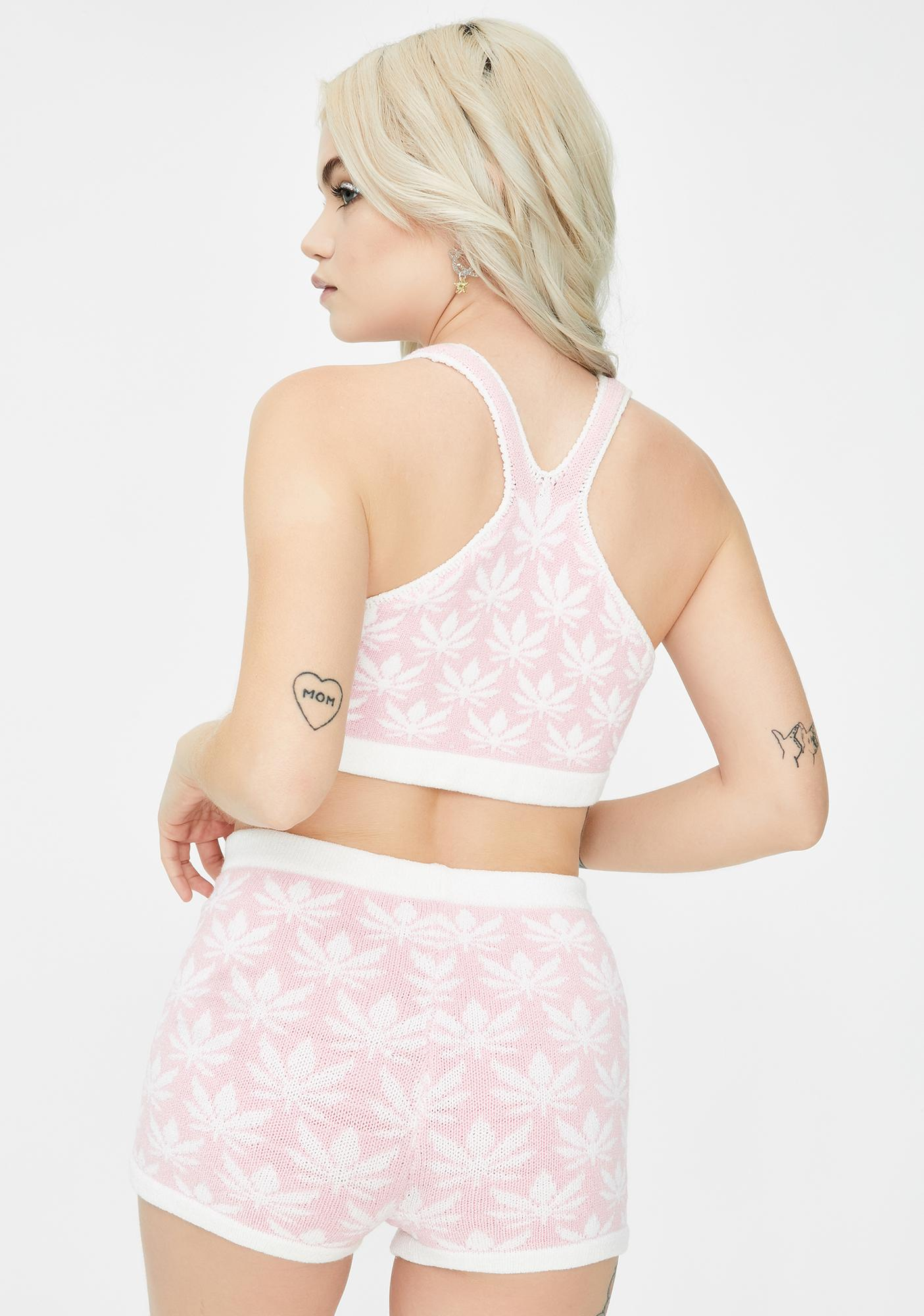 Knitty Kitty Pink Cannabliss Knit Shorts