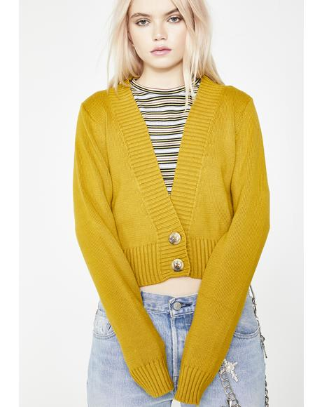 High Hopes Knit Cardigan