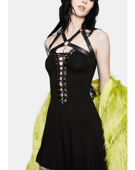 Minerva Skater Dress