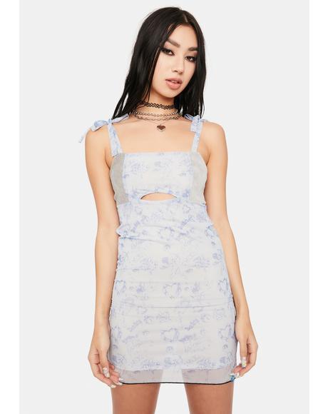 Cupid Love Mesh Mini Dress