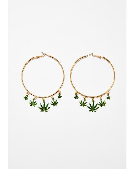Merry Jane Hoop Earrings