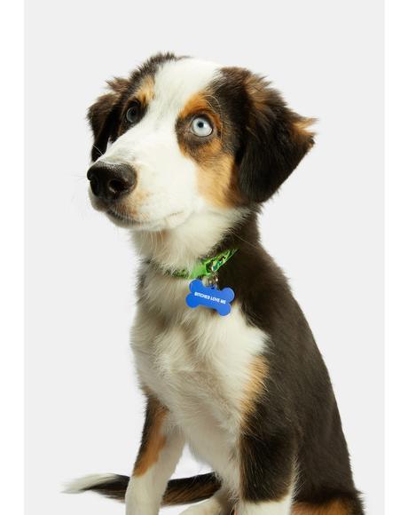 Puppy Playa Dog Tag